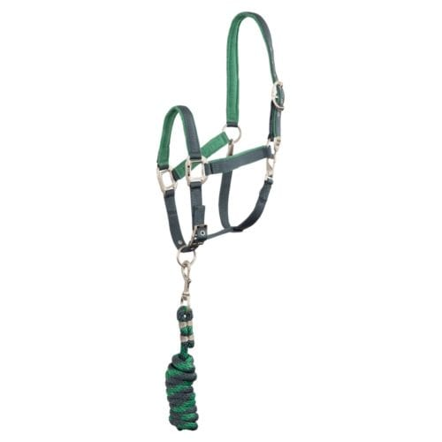 ANKY halter and lead ATH192001